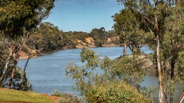 Murray River near Euston - Robinvale